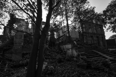 Lede, Ruines of Lede palace, Belgium, October 2015_9